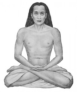Sri-Sri-Mahavatar-Babaji