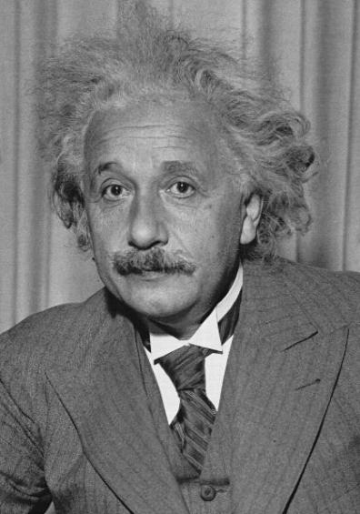 Albert Einstein (SUBMITTED PHOTO)